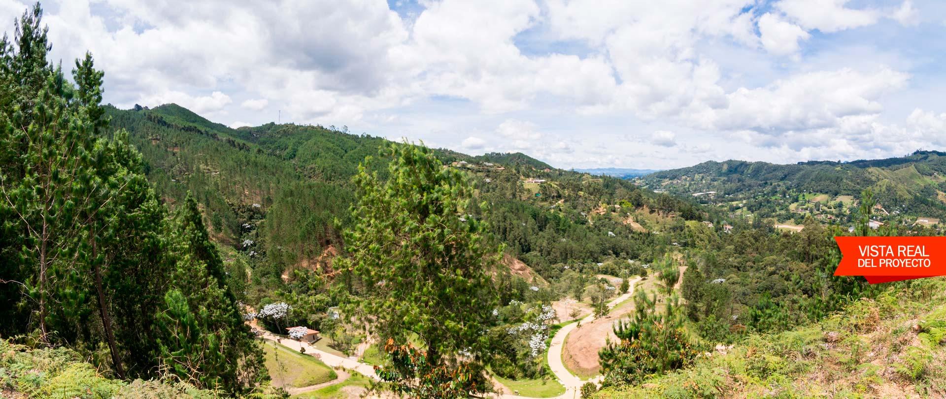 Juanito Laguna Slide